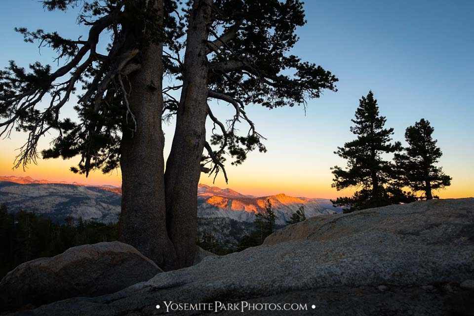 Fading sunset over the high country along the Mt Hoffman Trail - Yosemite Landscapes