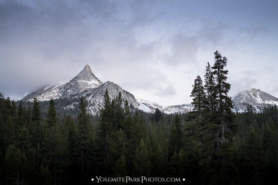 Cathedral Peak with June Snow, taken from Tioga Road at Tuolumne Meadows - Yosemite Landscapes