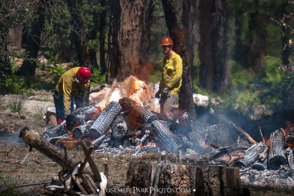 Fire prevention crew using controlled burns - Yosemite Editorial