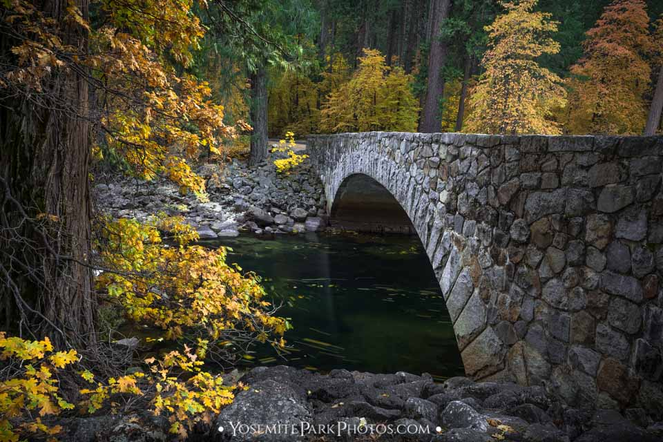 Pohono Bridge in Fall, with yellow trees and merced river - Yosemite Fall Colors