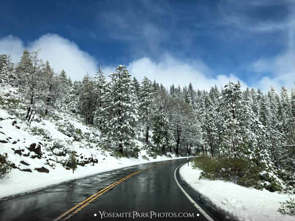 Highway 120 Road after snowstorm cleared - Yosemite Winter Snow