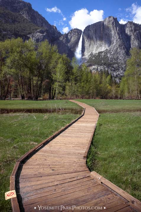 Walkway View From Sentinel Meadow - portrait orientation - Yosemite Falls Photos