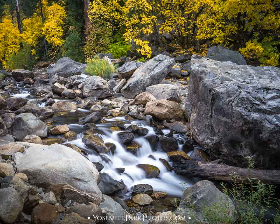 Fall leaves with long exposure water flowing - Merced River on el Portal Rd
