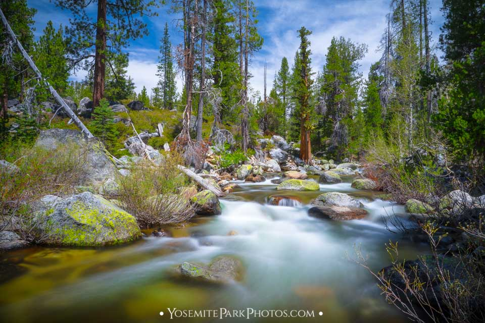 Yosemite Creeks - in the high country along Tioga Pass