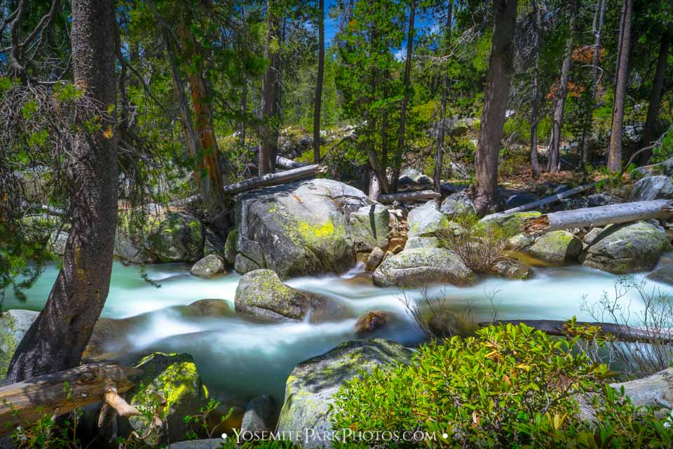 Yosemite Creek Near Tioga Rd - Flowing Long Exposure - Late June