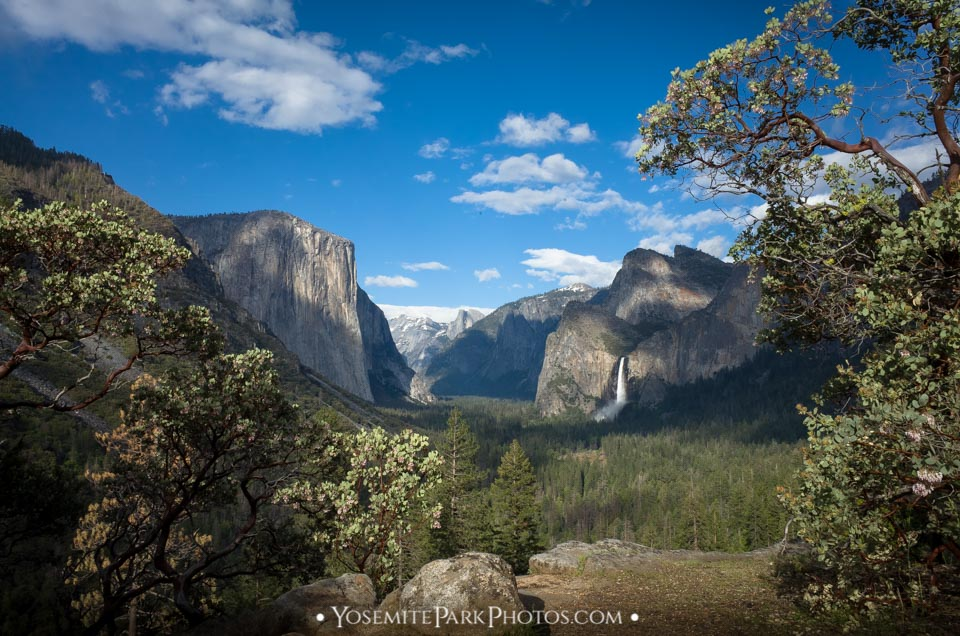 Yosemite Valley landscape with El Capitan and Bridalveil Falls in May - by Nathan Allen